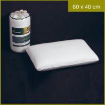 biogreen 60x40